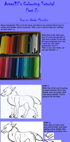 Colouring Tutorial: Muscles by ARVEN92