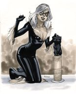 Black Cat - Comic Con Paris 2012 by MahmudAsrar