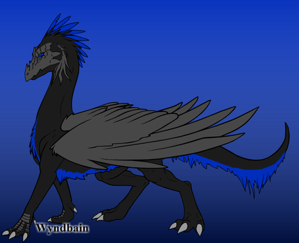 Night Hawk by TheWingedOnes