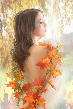 Autumn leaves by Surreal-Photographic