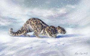 snow leopard by nosoart