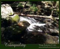 Tranquility by Avalonshroud