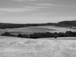 Luxembourgish Countryside 2 by maradong