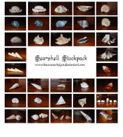 142pc SeaShells stockpack by PumpkinPhotography