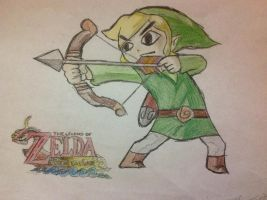Toon Link from Wind Waker by SHOOPxDAxWHOOP