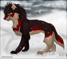 .: KillFury in snow... :. by Meoxie