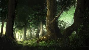 Forest Path by Alexlinde