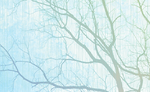 Tree Wallpaper Texture Bkg by TheStockWarehouse