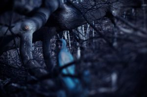 the trees are watching.. and so is she by beyondimpression