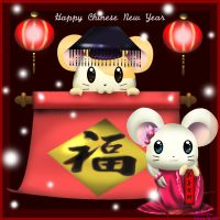 :Chinese New Year 2008: by FishFoundation