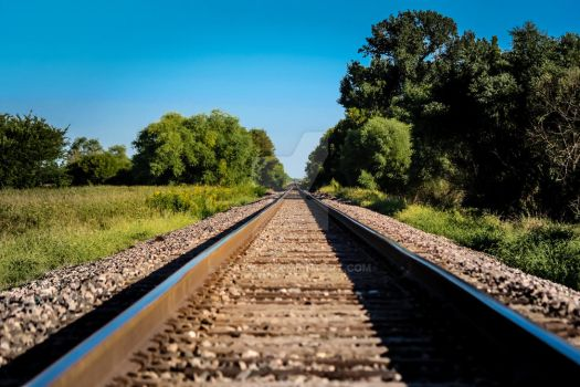 Union Pacific RR: On the Right Track (fresh) by dEfyant