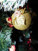 Golden Ornaments by Melrainbow