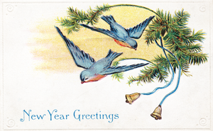 New Years Blue Birds by SolStock