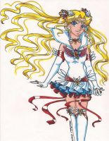 NEW Sailor Moon by Wildnature03