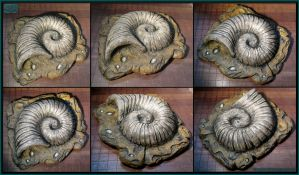 Helix Fossil - Large Cosplay Prop Version by CopperCentipede