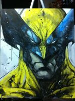 Wolverine by Tomuribecastro
