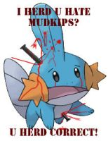 I HERD U HATE MUDKIPS? by RageVX