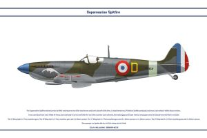 Spitfire Mk IX France 1 by WS-Clave