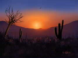 Desert Morning by Sillybilly60