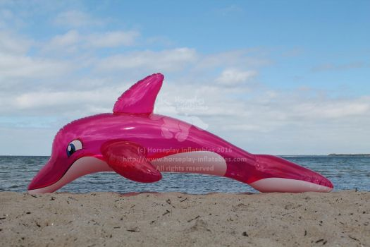 Inflatable Pink Barados Dolphin prototype by HorseplayInflatables