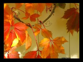 Autumns Tranquility by Valentine14