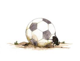Dung Beetle Playing Football by morganobrienart