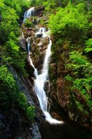 Stock: Mt Washington Waterfall by Celem