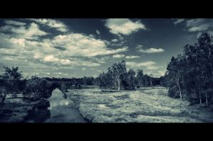 Some trees, a river and quite a bit of grass by BoholmPhotography