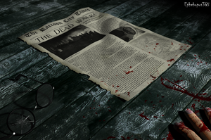 The Raccoon City Times by Ephebopus365