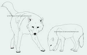 Free Wolf Linearts - Brushes by Kali-caracal