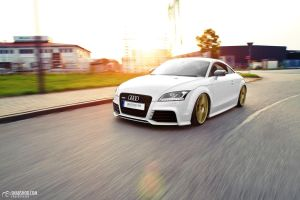 TTRS - Christian Steiberger by mystic-darkness
