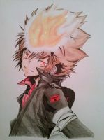Tsuna. by ADFlowright