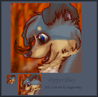 Shay ICON avi by Moonofwolfrun