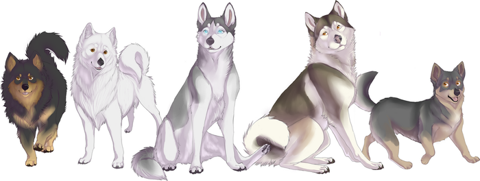 The NORDIC DOG PROJECT - Contest by Wolfunny