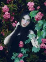 Amongst the Roses by SamanthaLenore