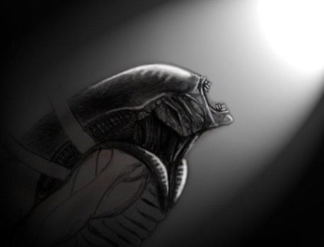 an unfinished alien pic by adamero