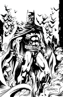 BATMAN by Brian Denham by DaneRot