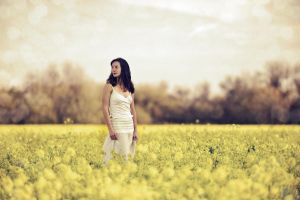 mustard field II by mbennion76