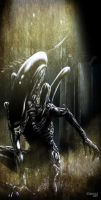 Alien by kevinenhart