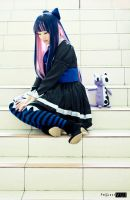 Stocking VI by RacoonFactory
