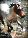~ Creating Waves ~ by EquusInspiration
