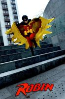Flying Robin by minicooly