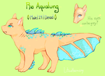 Rio Aqualung Reference 2015 by LiticaHarmony