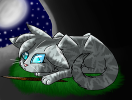 Jayfeather by Fallen-the-Wolfen
