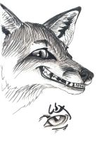 Smirking Fox by silvercrossfox
