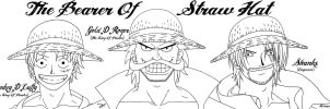 Art KSG The Bearer Of Straw Hat 049 by kenseigoku