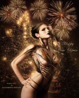 Happy New Year!!! by noune83