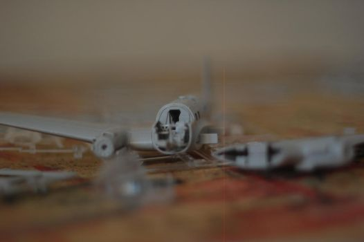 Plastic Model Airplane by despdfr