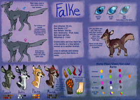 Falke Species Reference Sheet by Goldnight13