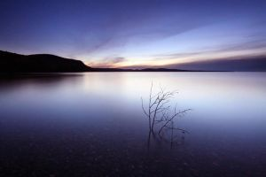 Calm Evening at Harmony Beach by tfavretto